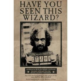 Maxi poster Sirius