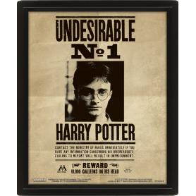 Quadro Lenticolare Harry/Sirius