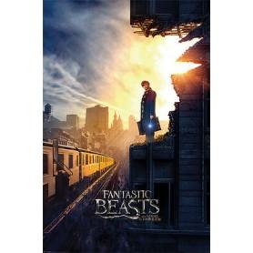 Poster Newt Scamander