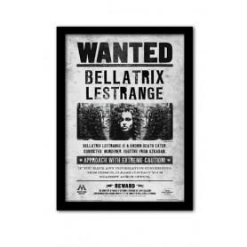 Quadro Bellatrix