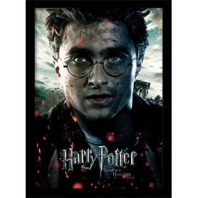 Quadro Harry Potter